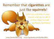 8.31.2016 squirrel7