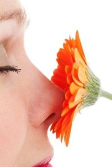nose flower